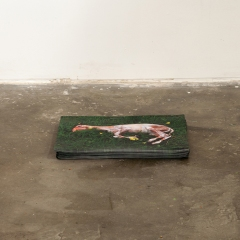 """Installation view """"Slaughtered lamb in the spring"""""""